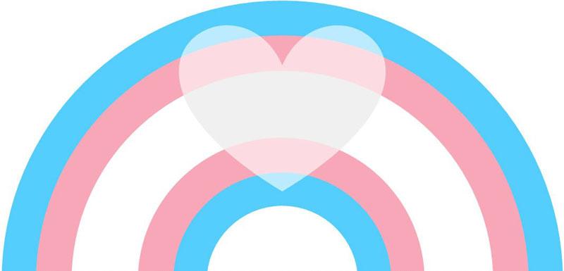 Transgender pride flag for embroidery version of blackwork rainbow pattern