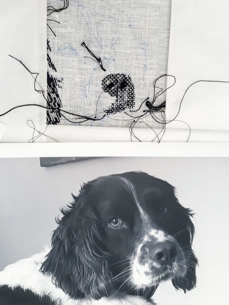 Bracken's nose and right part of his snout in blackwork. Underneath is the black and white photo I'm using for reference.