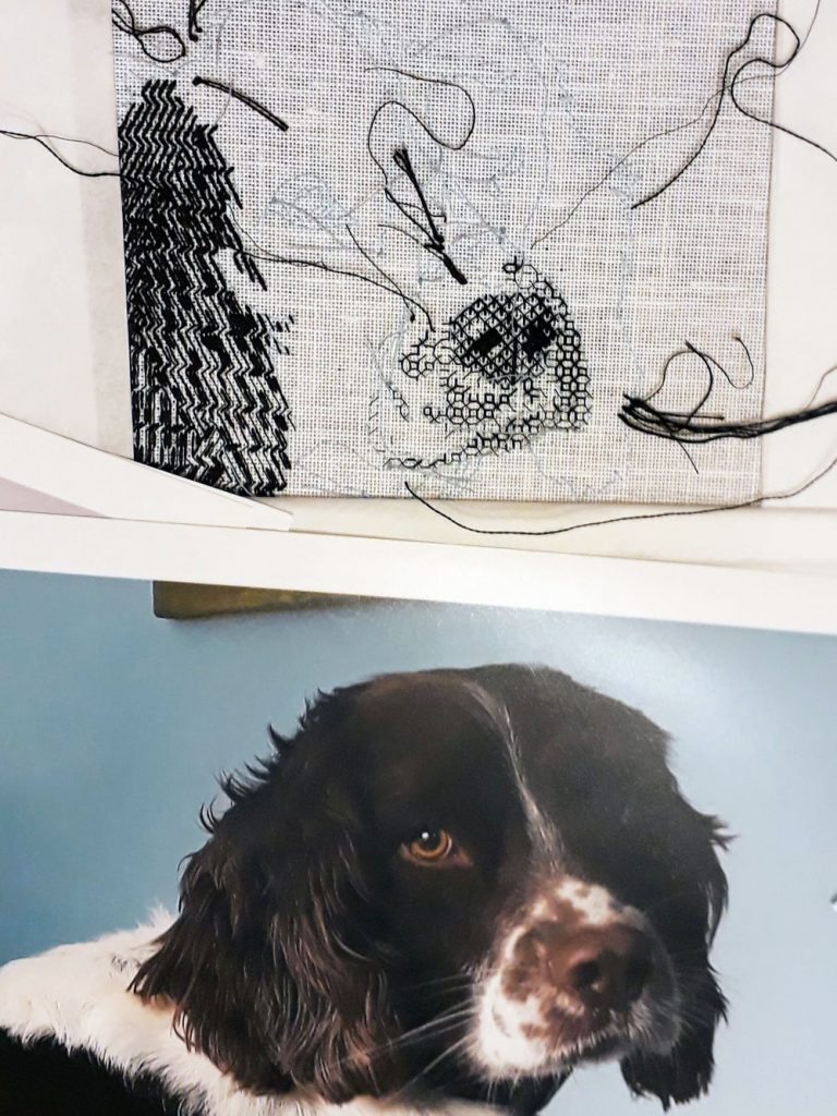 Bracken's nose and the lower part of his snout in blackwork. Below in the colour photo I'm using for reference.